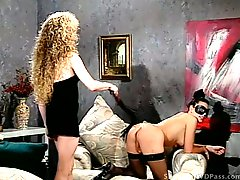 Vintage shemales have bdsm sex